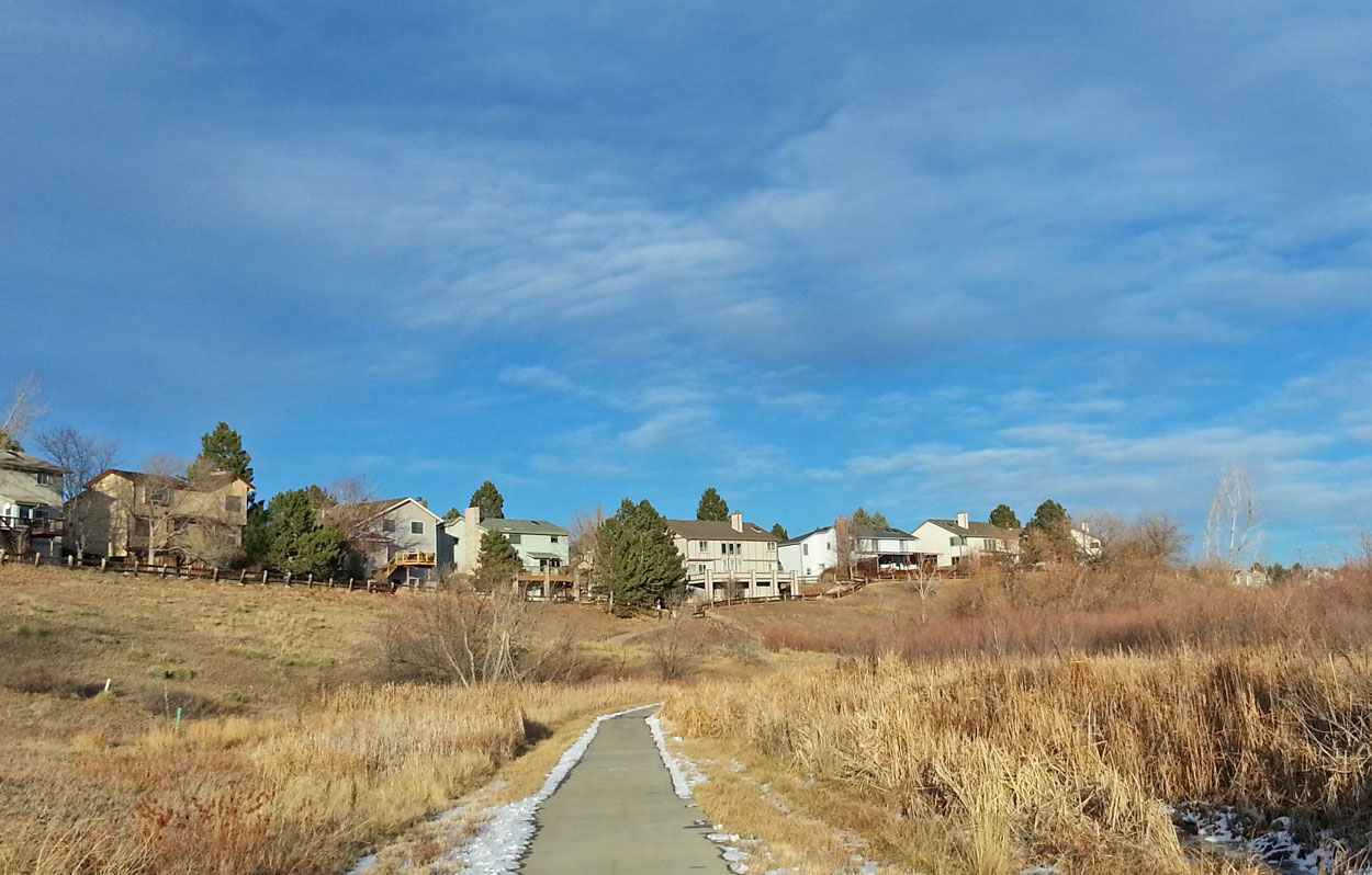 Wetland in Highlands Ranch