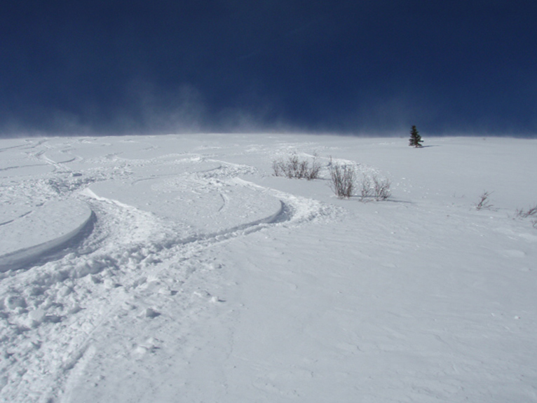 Powder Skiing Tracks on In The Mood