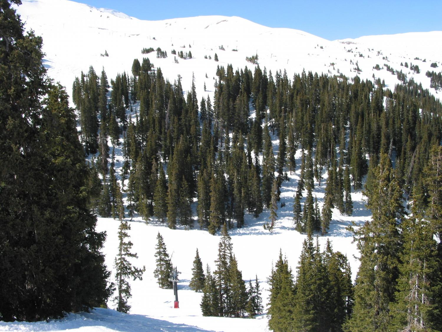 Tomahawk Ski Trail - Chair 4 and Chair 9 in Background